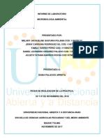 Informe Practica Microbiologia Ambiental