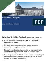08 Split Plots