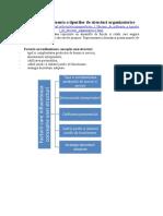 Factorii de Influenta a Tipurilor de Structuri Organizatorice