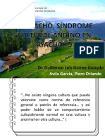 CHAUCHO- PIERO AVILA GARCIA
