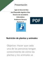 Nutricion de plantas y animales  Practica de rey.pptx