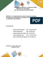 Borrador_Formato Consolidacion Fase (1) (1)