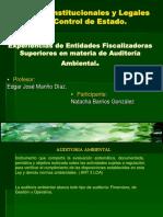 Auditoria Ambiental Internacional