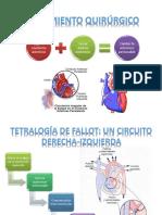 Efectos Perjudiciales de las Fases Tardías de Hipertrofia Cardíaca