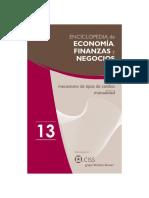 Enciclopedia de Economía y Negocios 13d