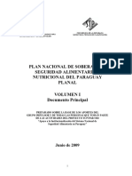 Paraguay Plan