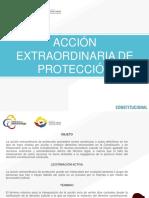 Accion Extraordinaria de Proteccion