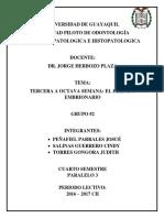 Anatomia Patologica Grupo 2