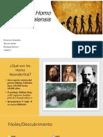 Francisca G Prehistoria Ppt
