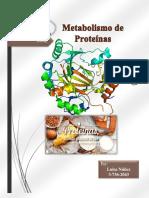 Trabajo Metabolismo de Proteinas