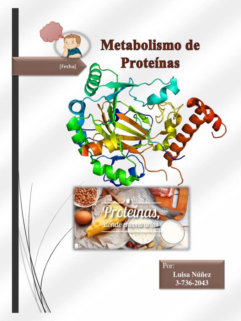 Traduccion del arnm en protein as para bajar de peso