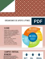 Organismos de Apoyo a Pymes