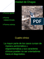 Clinica Chagas