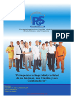 Brochure Pioneros Consulting Safety