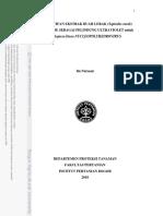 A10inu.pdf