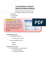 RESUMEN CICLO VITAL INDIVIDUAL Y FAMILIAR.docx