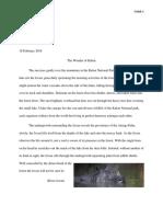 javan rhino research full