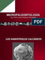 8. Nanofósiles calcáreos.pdf