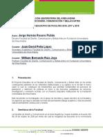 PROYECTO EDUCATIVO DE FACULTAD de la Facultad DE DISEÑO, COMUNICACIÓN Y BELLAS ARTES