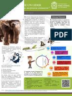 poster_estrategiaVF.pdf