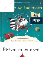 Raccoon on the Moon Usborne Phonics Readers