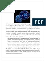 DEFINICIÓN-neuropsicologia (1)