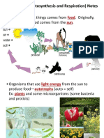 cell-energy-powerpoint.pdf