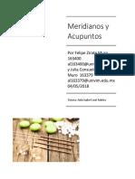 Zirate Julia_Felipe_Maridianos y Acupuntos (1)