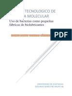 Uso de Bacterias Como Biolubricantes.pdf