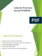 1_Vision Proyecto Basado en PMBOK.ppt