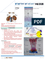 Adrenal Cortex Dr.gomez