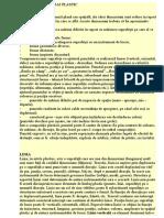 Elemente de Limbaj Plastic Desen-Anul-III-pedagogie