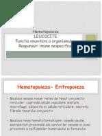 hematopoieza1