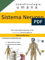 I curso de Anatomofisiologia Humana - Sistema Nervoso.ppt