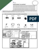 Evaluación Control Sentidos