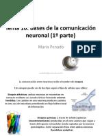 Presentación Tema 10 (1) Psicobio