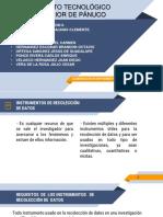 Elaboracion de Instrumentos de Datos