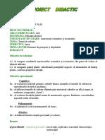 2_proiect_ed.plastica.doc
