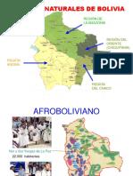 Población Indígena en Bolivia