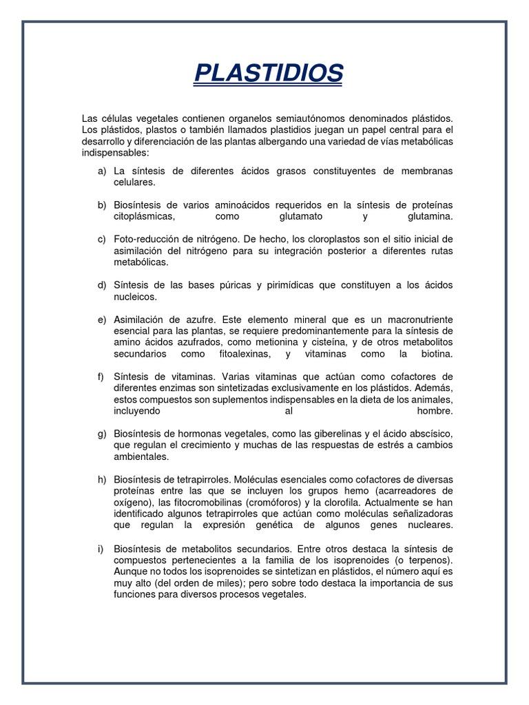 Plastidios Pdf