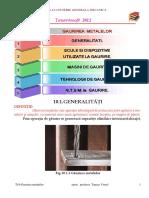 T10 Gaurirea .pdf