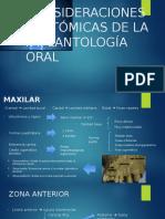 Consideraciones Anatómica de La Implantología Oral