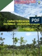 Caracterización de sistemas agroforestales