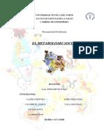 Informe Exposicion Metabolismo Social Grupo 3
