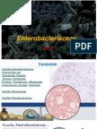 TEORIA 7   Enterobacterias