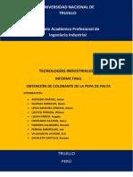 Proyecto tinte de palta.docx