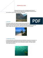 Biomas Del Perú
