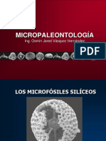 9. Los Microfósiles Silíceos