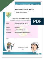 DIVISION CELULAR.docx