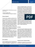 anatomia olho.pdf